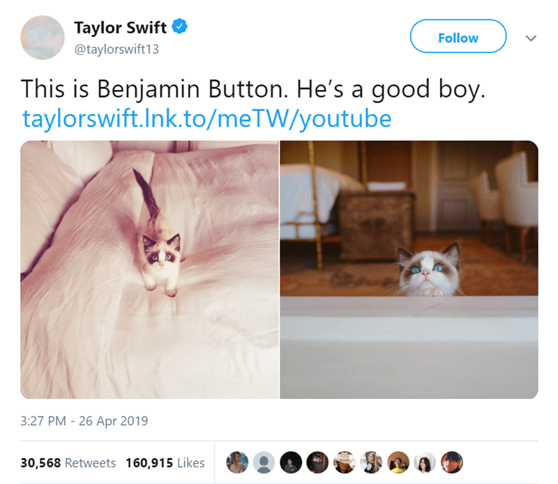 Text - Taylor Swift Follow @taylorswift13 This is Benjamin Button. He's a good boy. taylorswift.Ink.to/meTW/youtube 3:27 PM - 26 Apr 2019 30,568 Retweets 160,915 Likes