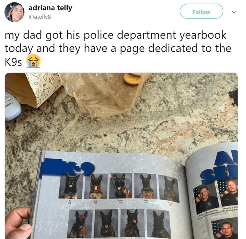Product - adriana telly @atelly8 Follow my dad got his police department yearbook today and they have a page dedicated to the K9s IRECTY AJ KS Axe Buer KD KP Enao Kas Jeremy J Cri L2mmerman Anal Services Manager Sr. Animal Ser 28