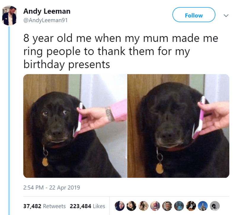 Dog - Andy Leeman Follow @AndyLeeman91 8 year old me when my mum made me ring people to thank them for my birthday presents 2:54 PM 22 Apr 2019 37,482 Retweets 223,484 Likes