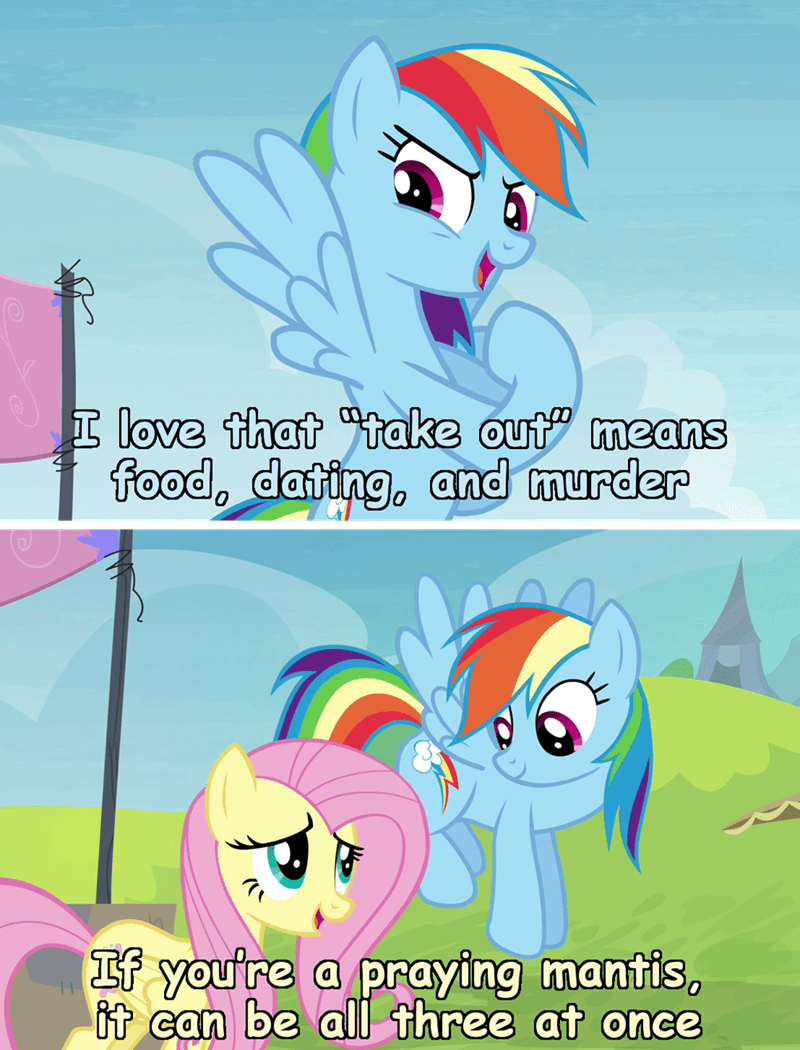 incorrect my little pony quotes screencap nature is so fascinating fluttershy trade ya rainbow dash - 9299457792