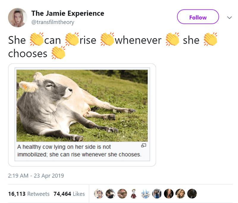 Wildlife - The Jamie Experience @transfilmtheory Follow whenever rise She she can chooses A healthy cow lying on her side is not immobilized; she can rise whenever she chooses. 2:19 AM 23 Apr 2019 16,113 Retweets 74,464 Likes