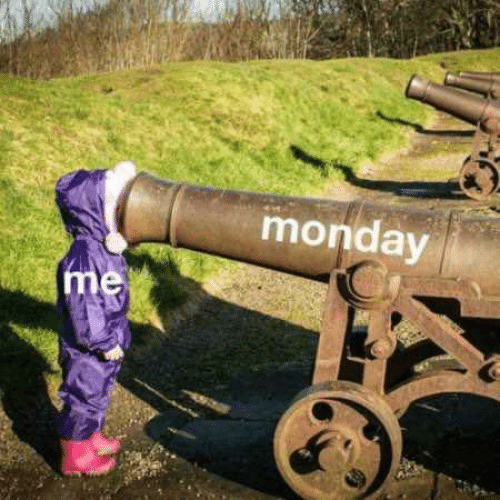 Cannon - monday me