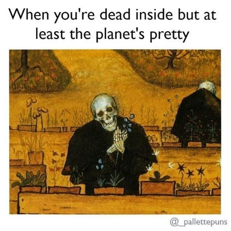 Art - When you're dead inside but at least the planet's pretty _pallettepuns