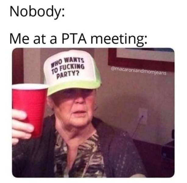 Text - Nobody: Me at a PTA meeting: WHO WANTS TO FUCKING PARTY? @macaroniandmomjeans