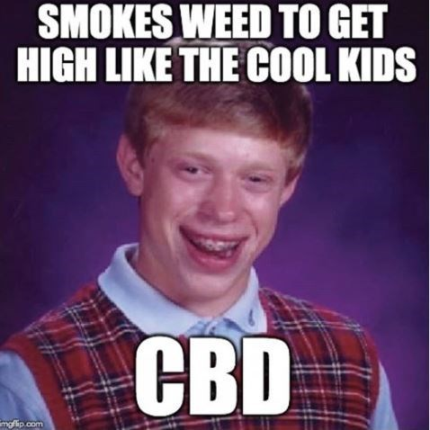 """'Bad Luck Bryan' meme with caption that reads, """"Smokes wee to get high like the cool kids - CBD"""""""