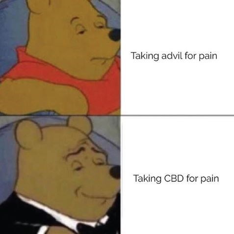 """'Tuxedo Winnie the Pooh' meme where the top panel reads, """"Taking Advil for pain"""" and the bottom panel reads, """"Taking CBD for pain"""""""