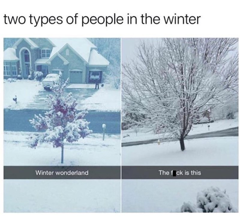 meme - Snow - two types of people in the winter The f ck is this Winter wonderland