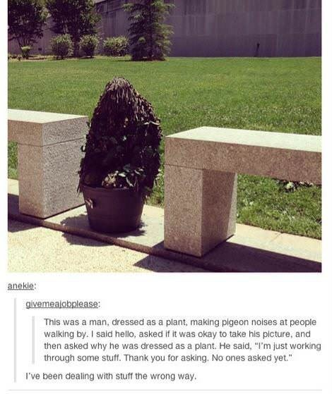 Photo of a guy dressed as a shrub in a pot; Tumblr text below about how he is 'just trying to work through some stuff'
