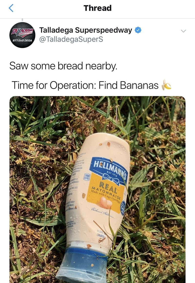 Water - Thread TAeTalladega Superspeedway @TalladegaSuperS 877.Go2.DEGA Saw some bread nearby. Time for Operation: Find Bananas HELLMANNS RMAION EST.1913 sURATED 100 OMMITED SUNSIBLY REAL MAYONNAISE Made with Cage Free Eggs FREE EGGS FREE EST FOODS Rechardhe ans c 11.5 FL (340M