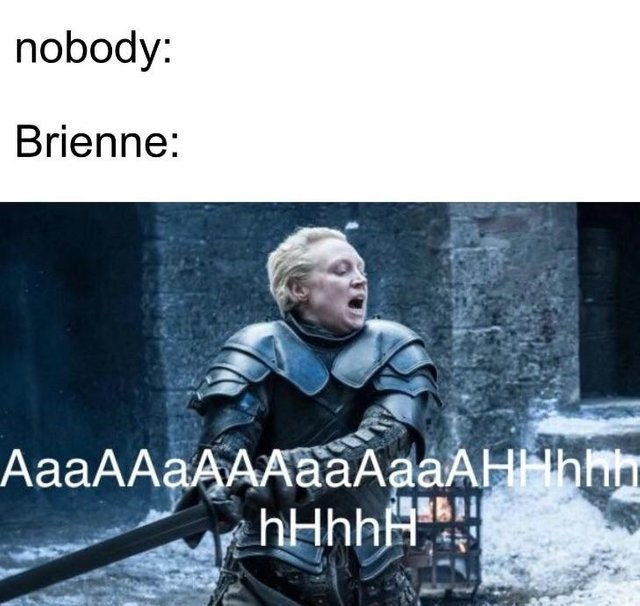 Photo caption - nobody: Brienne: АааAAаААAааAaaAН-hin ҺНҺҺА