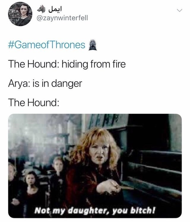 Text - ایمل @zaynwinterfell #GameofThrones The Hound: hiding from fire Arya: is in danger The Hound: Not my daughter, you bitch!