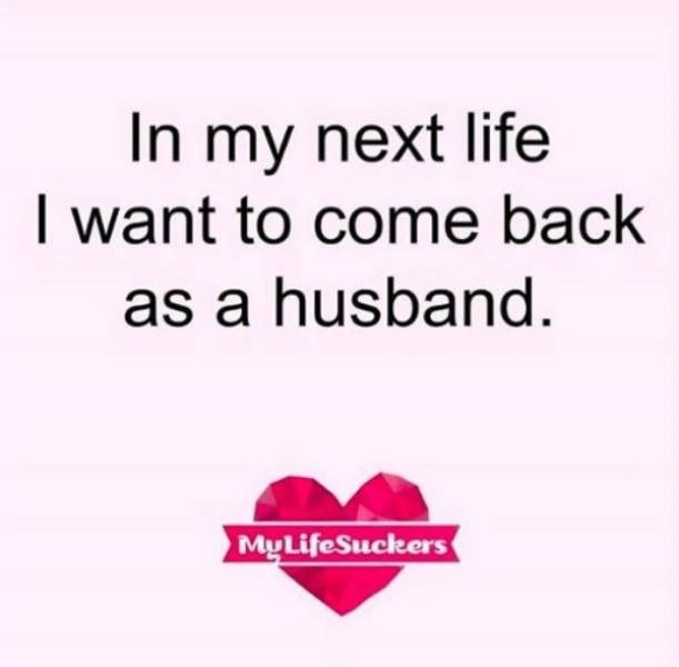 Text - In my next life I want to come back as a husband. MyLifeSuckers