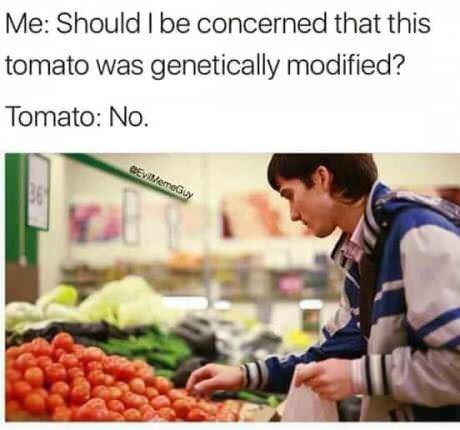 """Caption that reads, """"Me: Should I be concerned that this tomato was genetically modified? Tomato: No"""" above a stock photo of a guy at a grocery store shopping for tomatoes"""