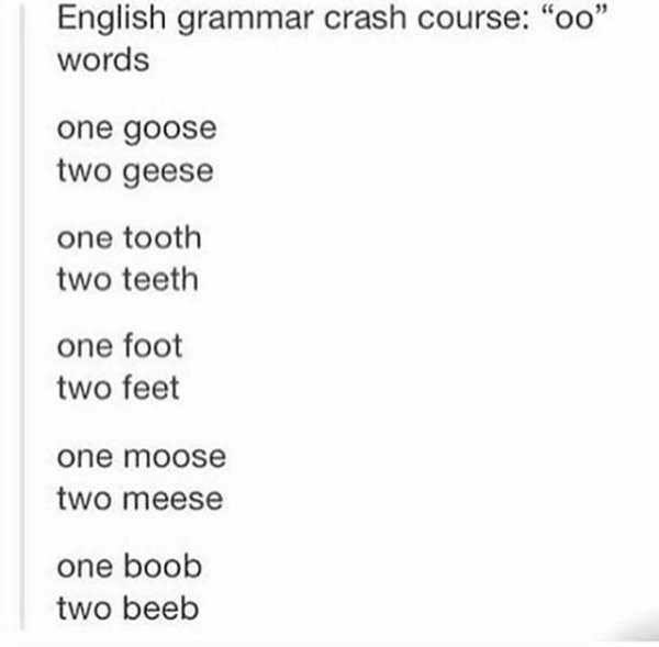 """Text - English grammar crash course: """"oo"""" words one goose two geese one tooth two teeth one foot two feet one moose two meese one boob two beeb"""