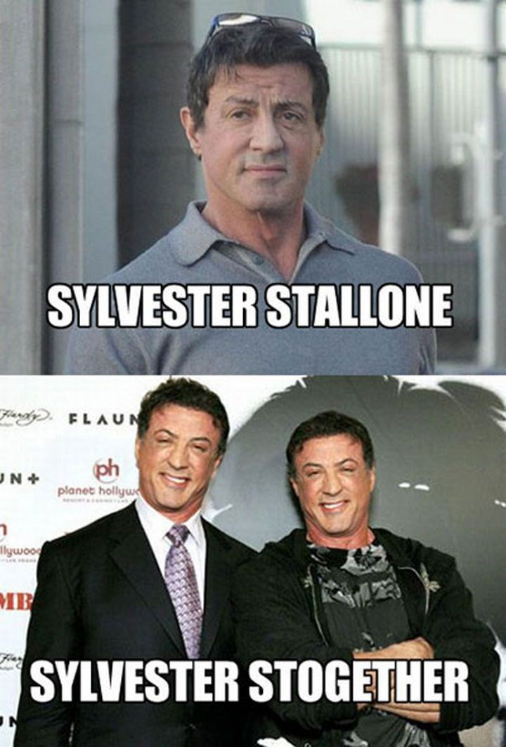 "Funny photos of ""Sylvester Stallone"" and ""Sylvester Stogether"""
