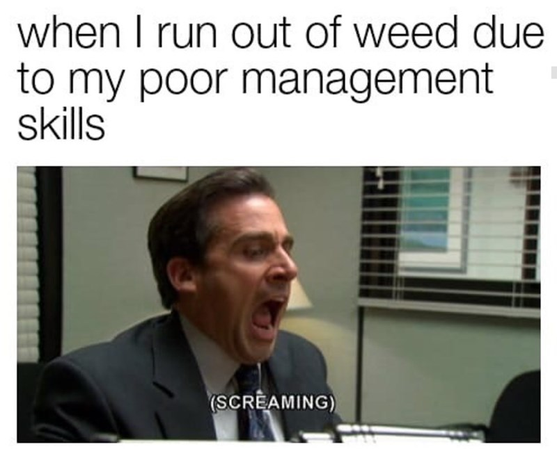 Text - when I run out of weed due to my poor management skills (SCREAMING