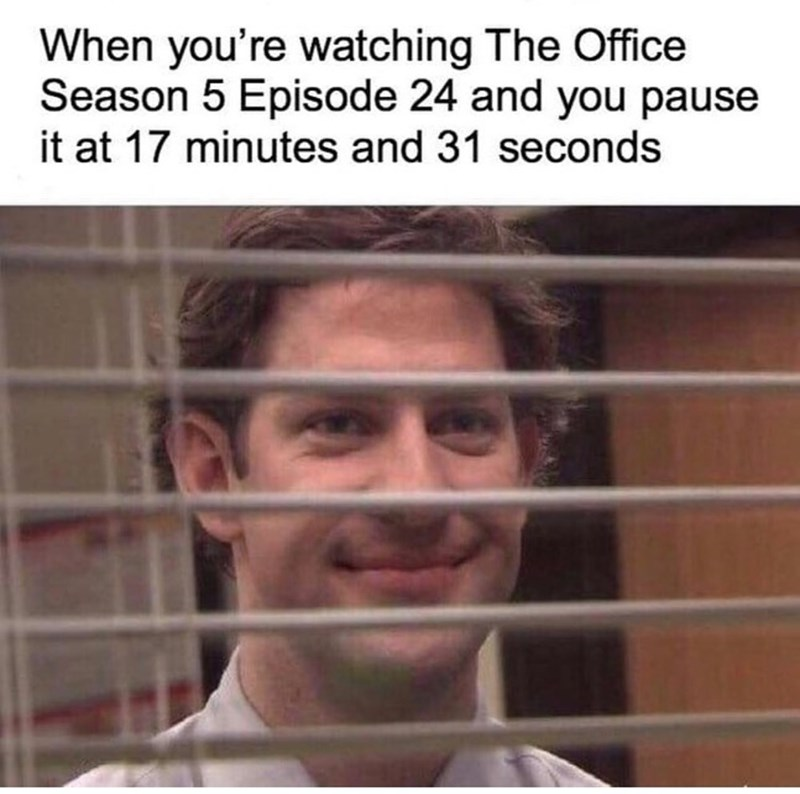 Face - When you're watching The Office Season 5 Episode 24 and you pause it at 17 minutes and 31 seconds