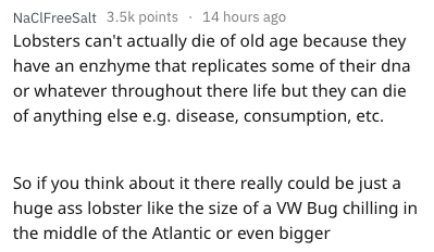 Text - NaClFreeSalt 3.5k points 14 hours ago Lobsters can't actually die of old age because they have an enzhyme that replicates some of their dna or whatever throughout there life but they can die of anything else e.g. disease, consumption, etc. So if you think about it there really could be just a huge ass lobster like the size of a Vw Bug chilling in the middle of the Atlantic or even bigger