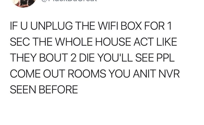 Text - IF U UNPLUG THE WIFI BOX FOR 1 SEC THE WHOLE HOUSE ACT LIKE THEY BOUT 2 DIE YOU'LL SEE PPL COME OUT ROOMS YOU ANIT NVR SEEN BEFORE