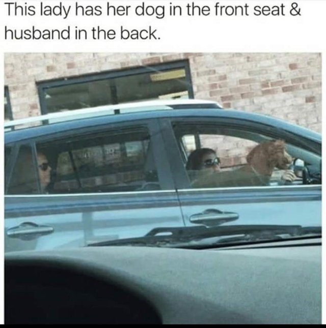 Vehicle door - This lady has her dog in the front seat & husband in the back.