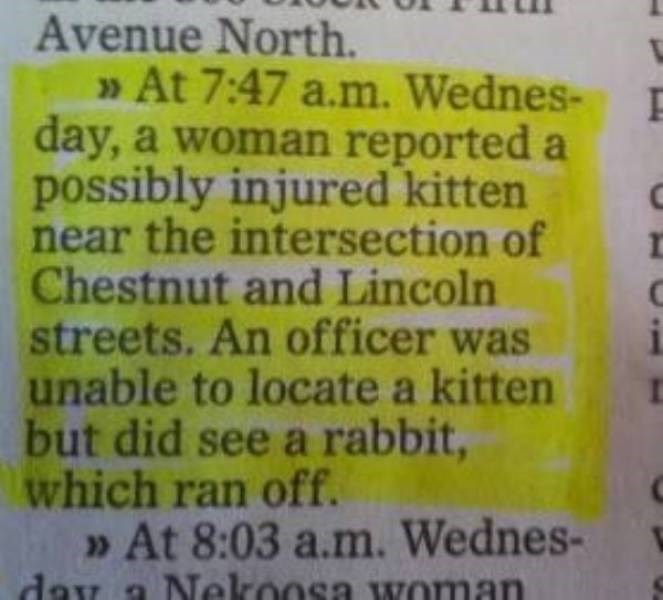 small town meme - Text - Avenue North. At 7:47 a.m. Wednes- day, a woman reported a possibly injured kitten near the intersection of Chestnut and Lincoln streets. An officer was unable to locate a kitten but did see a rabbit, which ran off. » At 8:03 a.m. Wednes- day Nekoosa Woman