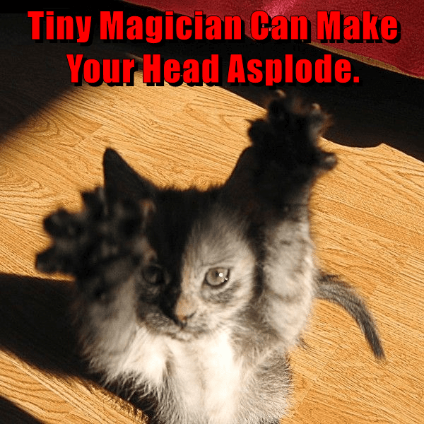 Cat - Tiny Magician Can Make Your Head Asplode.