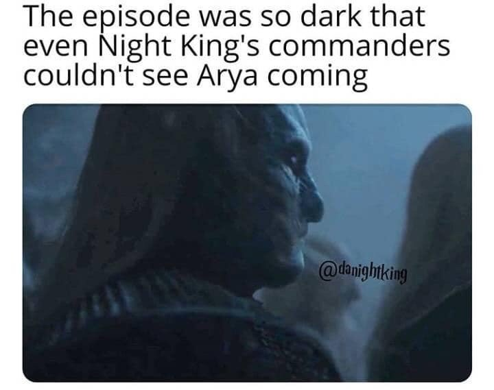 dank memes - Text - The episode was so dark that even Night King's commanders couldn't see Arya coming @danightking