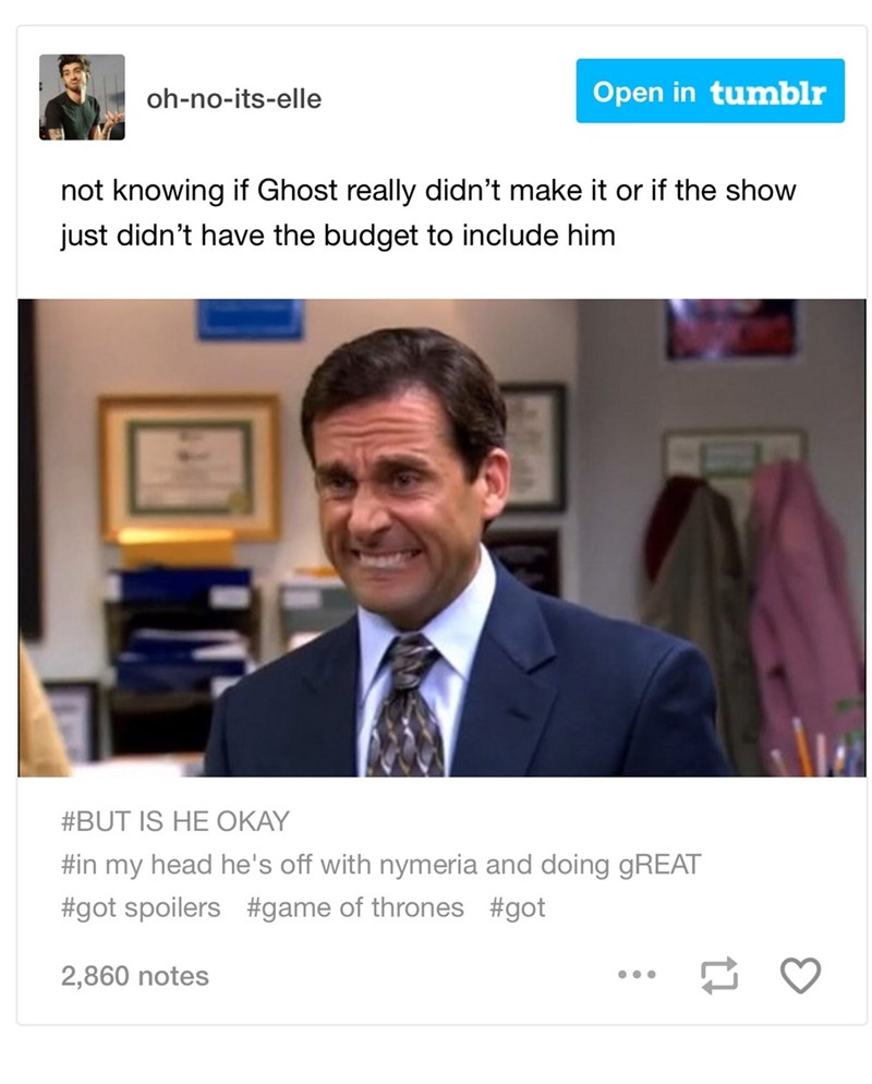 dank memes - Job - Open in tumblr oh-no-its-elle not knowing if Ghost really didn't make it or if the show just didn't have the budget to include him #BUT IS HE OKAY #in my head he's off with nymeria and doing GREAT #got spoilers #game of thrones #got 2,860 notes