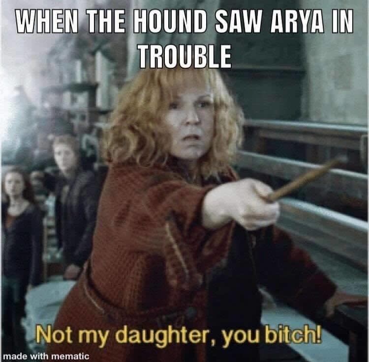 dank memes-hound saw arya in trouble