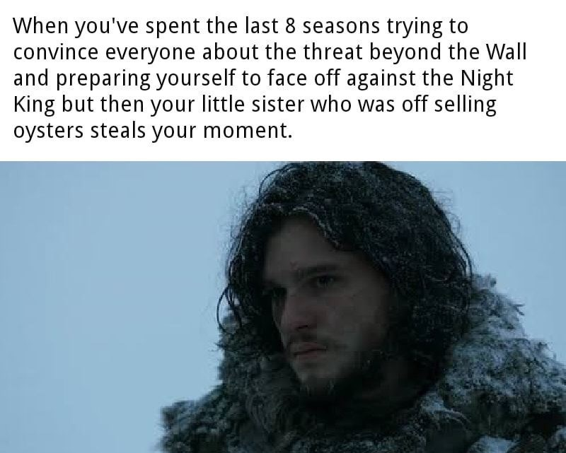 dank memes - Hair - When you've spent the last 8 seasons trying to convince everyone about the threat beyond the Wall and preparing yourself to face off against the Night King but then your little sister who was off selling oysters steals your moment.