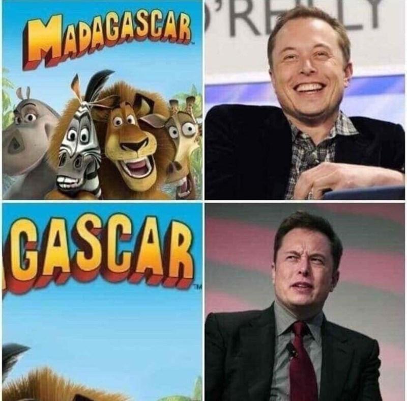 dank memes - Animated cartoon - MADAGASCAR RE CASCAR