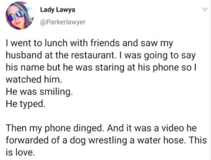 Text - Lady Lawya @Parkerlawyer I went to lunch with friends and saw my husband at the restaurant. I was going to say his name but he was staring at his phone so watched him. He was smiling. He typed. Then my phone dinged. And it was a video he forwarded of a dog wrestling a water hose. This is love.