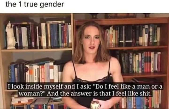 """Library - the 1 true gender I look inside myself and I ask: """"Do I feel like a man woman?"""" And the answer is that I feel like shit.] MOR ONCK"""