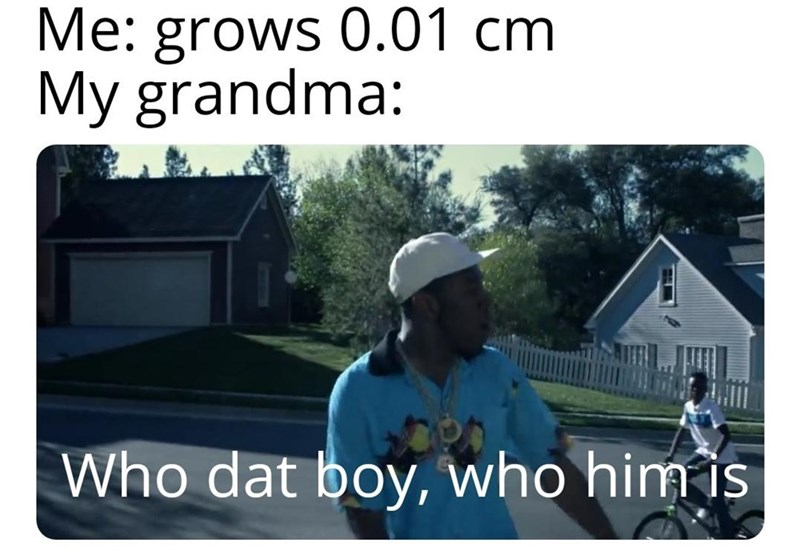 Roof - Me: grows 0.01 cm My grandma: Who dat boy, who him is