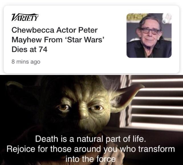 Funny meme honoring the life of Peter Mayhew, who played the part of Chewbacca in Star Wars