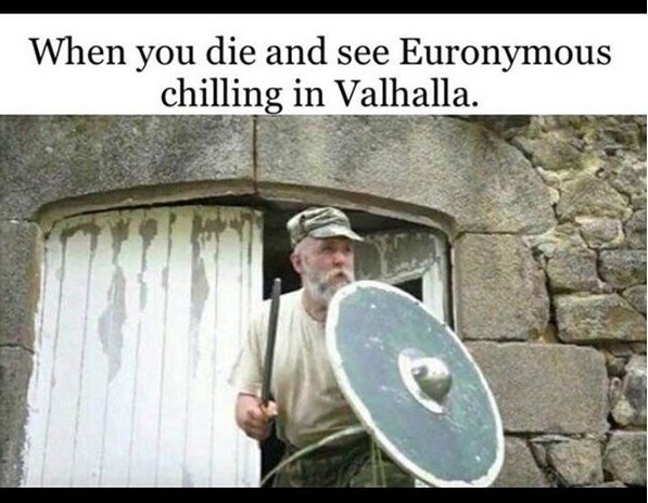 """Caption that reads, """"When you die and see Euronymous chilling in Valhalla"""" above a photo of a guy defending himself with a shield"""