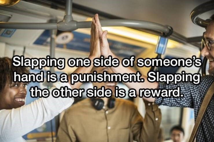Photo caption - Slapping one side of someone's hand is a punishment, Slapping the other side is a reward.
