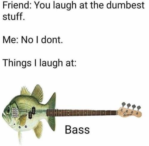 String instrument - Friend: You laugh at the dumbest stuff. Me: No I dont Things I laugh at: ARnere Bass