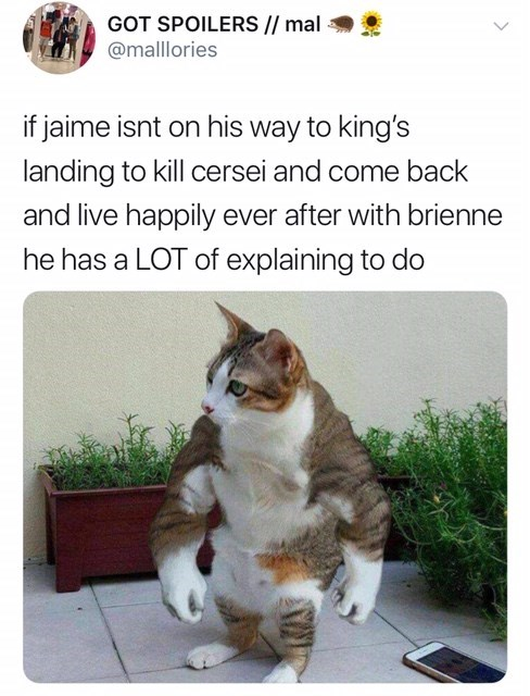'Game of Thrones' Season 8 Episode 4: If jaime isnt on his way to king's landing to kill cersei and come back and live happily ever afater with brienne he has a lot of explaining to do.