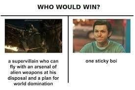 """Caption that reads, """"Who would win?"""" above text that reads, """"A supervillain who can fly with an arsenal of alien weapons at his disposal and a plan for world domination"""" next to a photo of Peter Parker above text that reads, """"One sticky boi"""""""