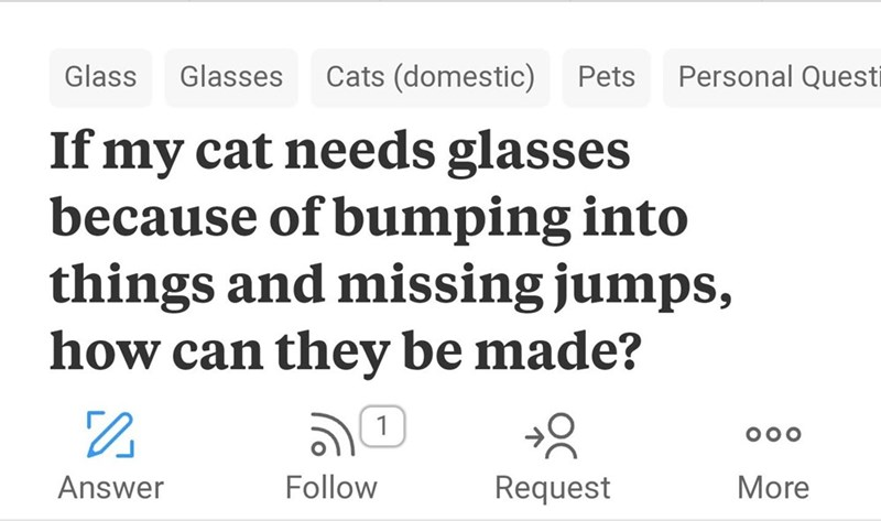 Text - Personal Questi Cats (domestic) Pets Glass Glasses If my cat needs glasses because of bumping into things and missing jumps, how can they be made? 1 OOO Follow Answer Request More
