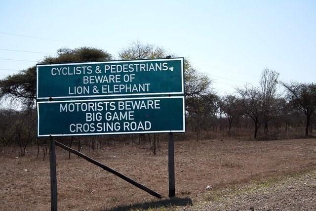 Signage - CYCLISTS & PEDESTRIANS BEWARE OF LION&ELEPHANT MOTORISTS BEWARE BIG GAME CROSSING ROAD