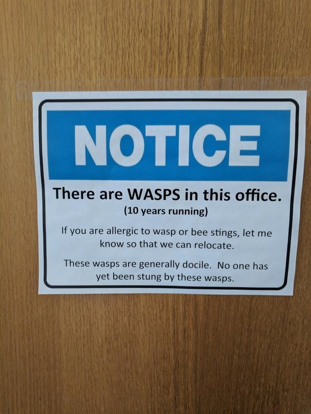 Text - NOTICE There are WASPS in this office. (10 years running) If you are allergic to wasp or bee stings, let me know so that we can relocate. These wasps are generally docile. No one has yet been stung by these wasps.