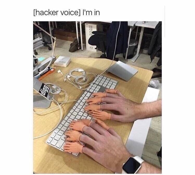 Hand - [hacker voice] I'm in