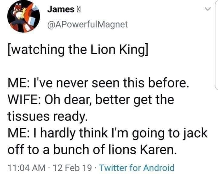 Text - James @APowerfulMagnet watching the Lion Kingl ME: I've never seen this before. WIFE: Oh dear, better get the tissues ready. ME: I hardly think I'm going to jack off to a bunch of lions Karen. 11:04 AM 12 Feb 19 Twitter for Android