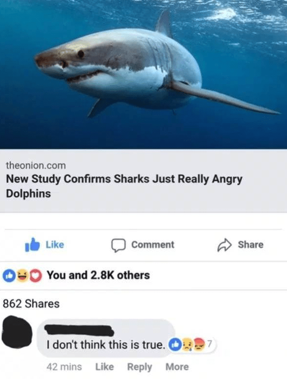 Fish - theonion.com New Study Confirms Sharks Just Really Angry Dolphins Like Share Comment You and 2.8K others 862 Shares I don't think this is true. 7 Like Reply More 42 mins