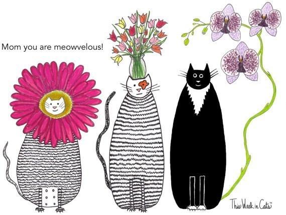 Cat - Mom you are meowvelous! Tha Makin Catas