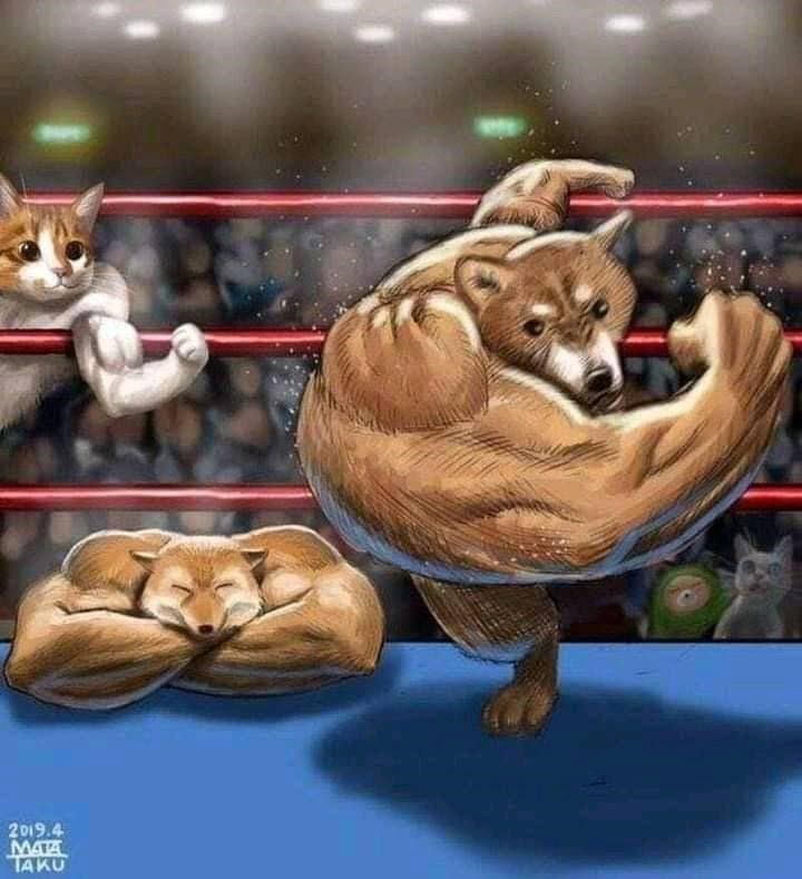 Animated cartoon - 2019.4 MATA TAKU