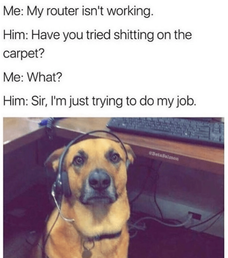 Dog - Me: My router isn't working. Him: Have you tried shitting on the carpet? Me: What? Him: Sir, I'm just trying to do my job. BetaSalmon