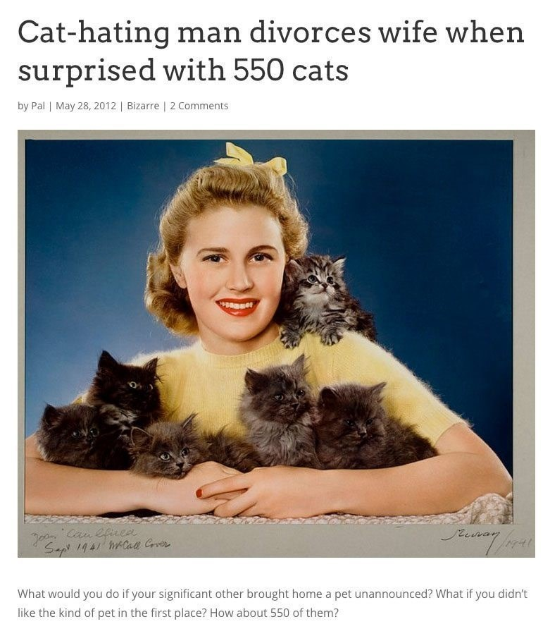 Cat - Cat-hating man divorces wife when surprised with 550 cats by Pal | May 28, 2012 | Bizarre | 2 Comments Can eficee Sap 1941 hCae Gver What would you do if your significant other brought home a pet unannounced? What if you didn't like the kind of pet in the first place? How about 550 of them?
